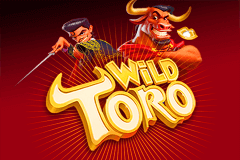 Casino provspela Wild 138123